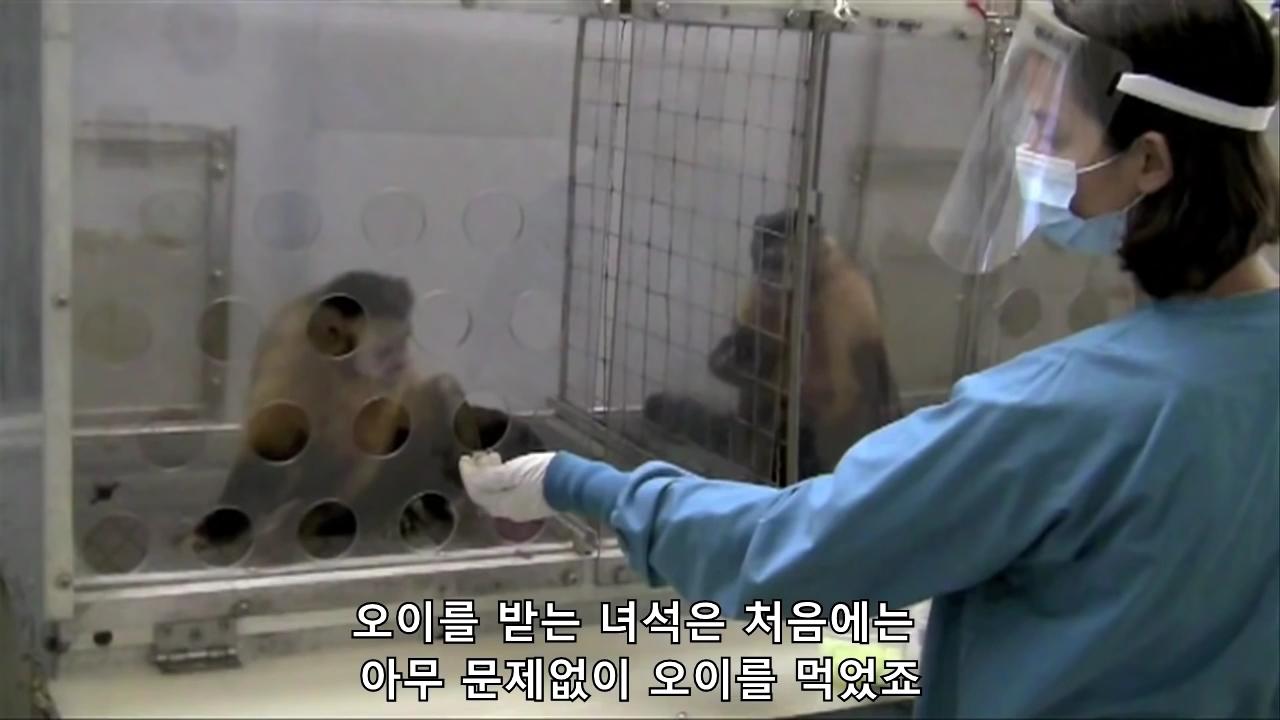 공정에 대한 동물 실험[06-26-41].JPG